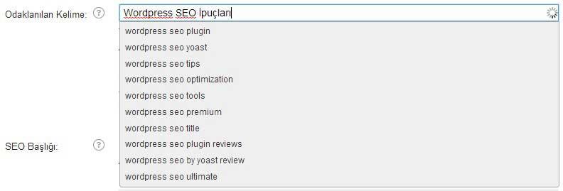 wordpress-seo-ipuclari-odaklanilan-kelime-Wordpress SEO İpuçları