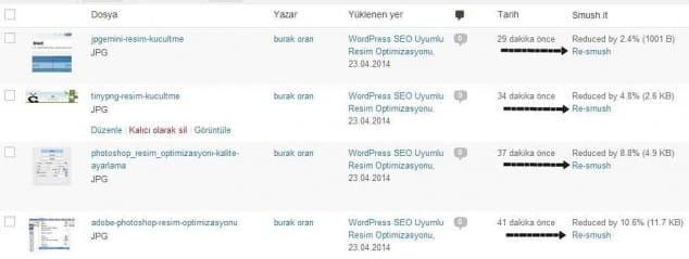 wordpress site hızlandırma wp-smush