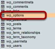 Wordpress Eklenti Etkisizleştirme Wp-option-table