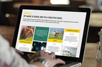 Wordpress tema seçimi