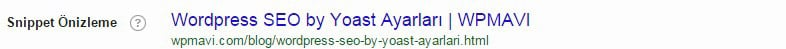 Wordpress SEO by Yoast Ayarları - Snippet Görünümü