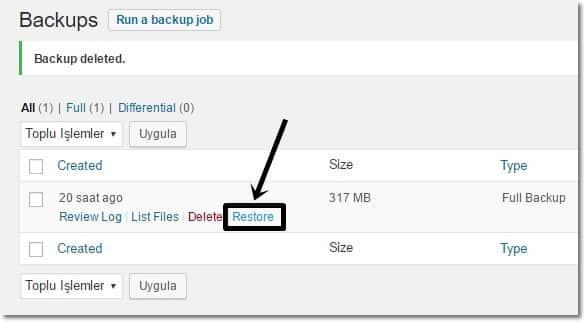 Wordpress yedek geri yükleme