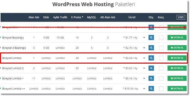Blog Nasıl Açılır - WordPress Hosting Paket Seçimi