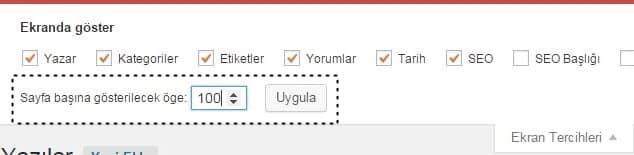 Wordpress yazılar ekran tercihleri listeleme sayısı