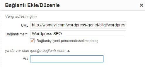 Anchor Link WordPress - Seo uyumlu makale yazımı
