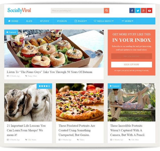 en iyi wordpress temaları - seo uyumlu wordpress temaları - en hızlı wordpress temaları - sosyal tema