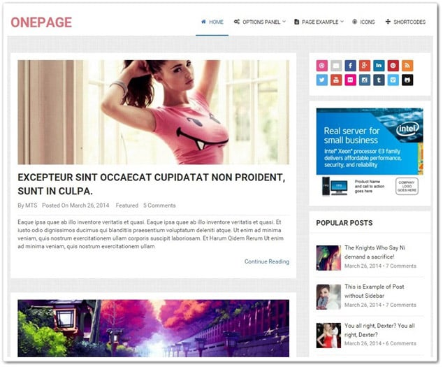 Onepage wordpress blog teması - wordpress blog temaları