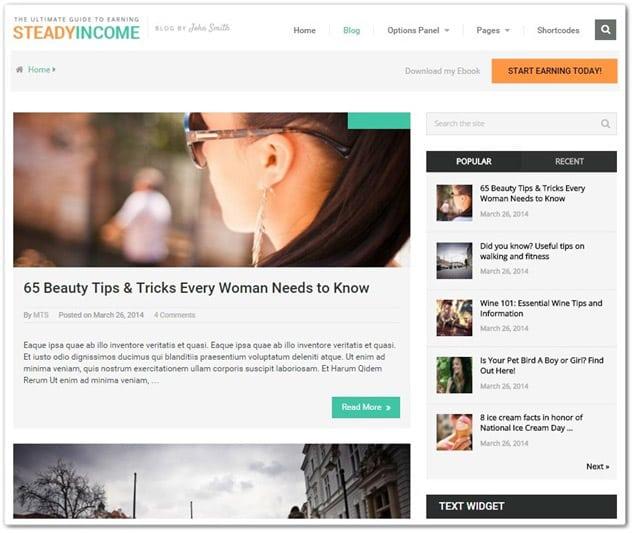 Wordpress Blog Temaları - SteadyIncome WordPress Blog Teması