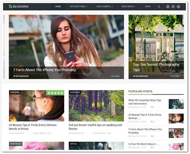 wp blog temaları - wp blog teması blogging