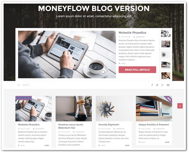 Wordpress Blog Teması - WordPress Blog Temaları - MoneyFlow