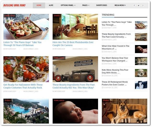 Wordpress sosyal paylaşım teması