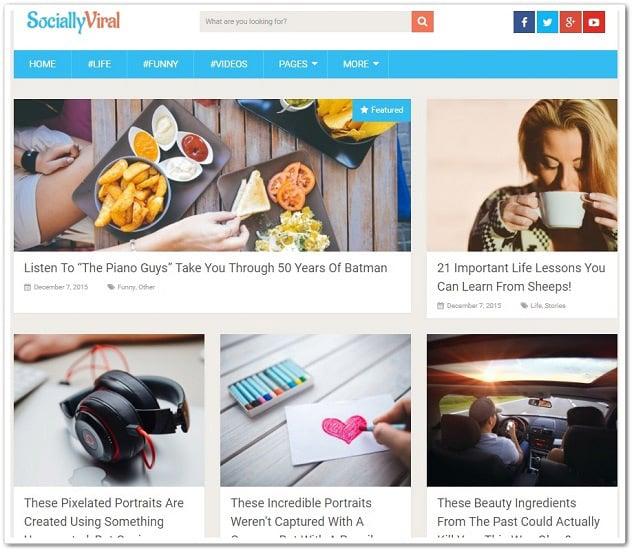 Ücretsiz WordPress Temaları - SociallyViral