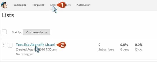Wordpress Email Aboneliği Abonelik Listesi Yönetme / 1