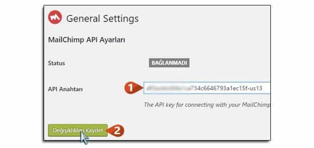 Wordpress Abonelik Sistemi API Key