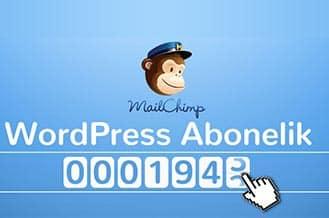 Wordpress Email Aboneliği - WordPress Toplu Mail Yollama