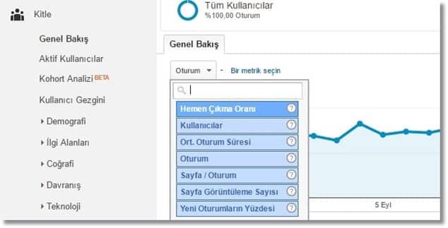 Google Analytics Kitle Genel Bakış