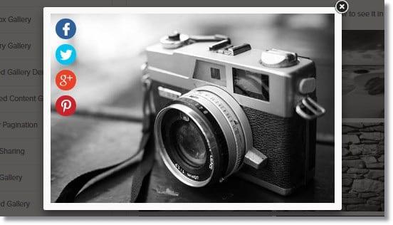 Wordpress Galeri Eklentisi Her Resim İçin Ayrı Paylaşım Butonları