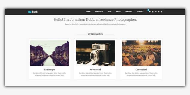 Kubb - (WordPress Fotoğrafçılık Teması)