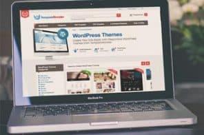 Ücretli Wordpress Temaları Satılan Siteler
