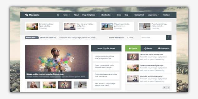 Wordpress Adsense Teması - Magazine