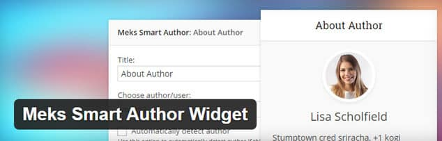 Meks Smart Author Widget - (WordPress Yazar Kutusu Eklentisi)