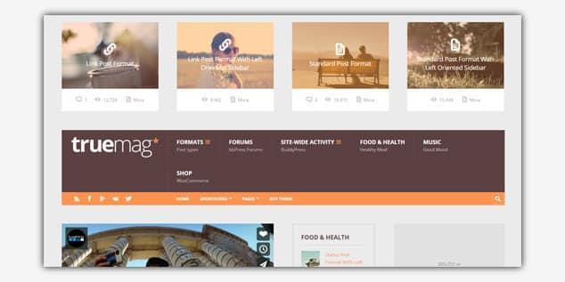 Wordpress Adsense Teması - Truemag