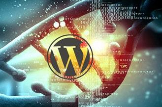 Wordpress ile Yapılmış Siteler - WordPress Site Örnekleri