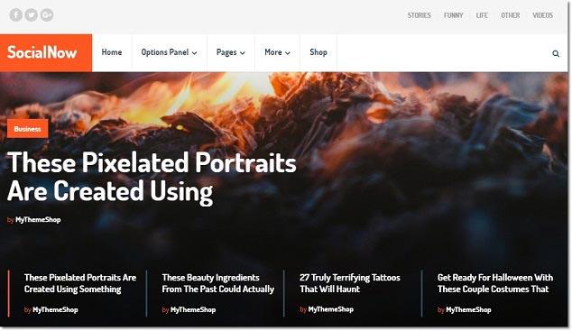 Wordpress Blog Teması - Social Now