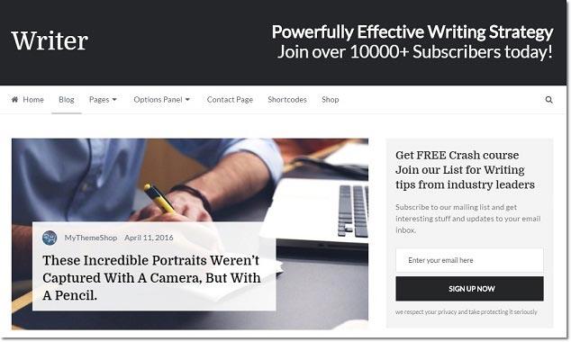 Wordpress Blog Teması - Writer