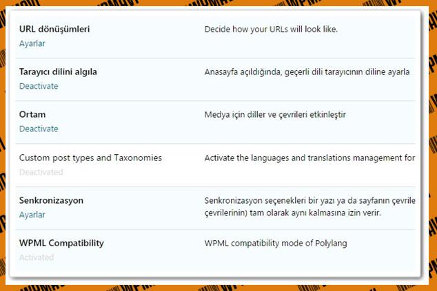 Wordpress Dil Seçeneği Ekleme Ayarları