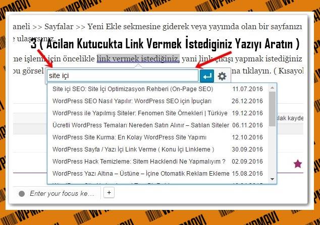 Wordpress Link Ekleme