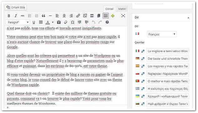Wordpress Siteye Çoklu Dil Ekleme