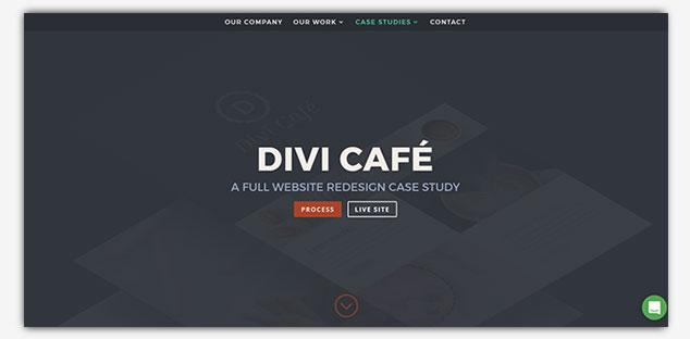 Divi - WordPress Tek Sayfa Tema