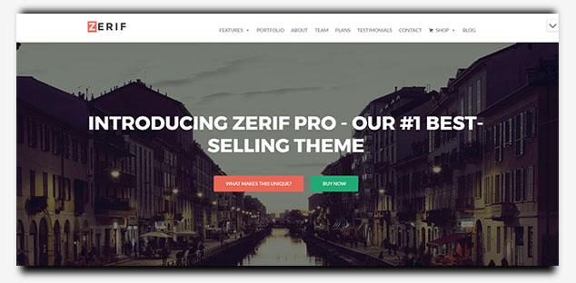 Zerif - WordPress Tek Sayfa Tema