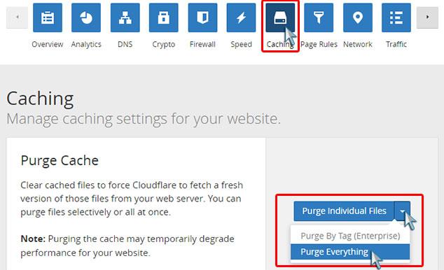 CloudFlare Fastest Cache Ayarları - Purge Cache