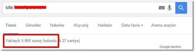 SEO İpuçları - Google İndex Saysı