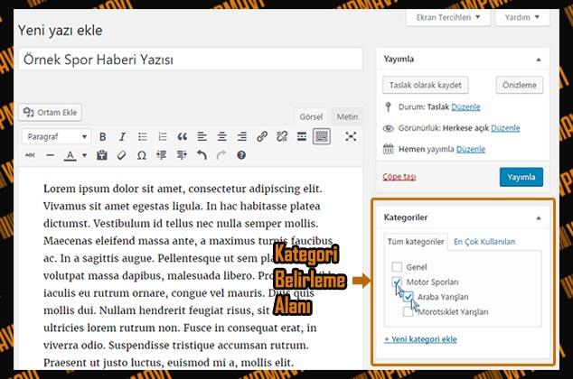 WordPress Kategori Ekleme - Kategoriye Yazı Ekleme