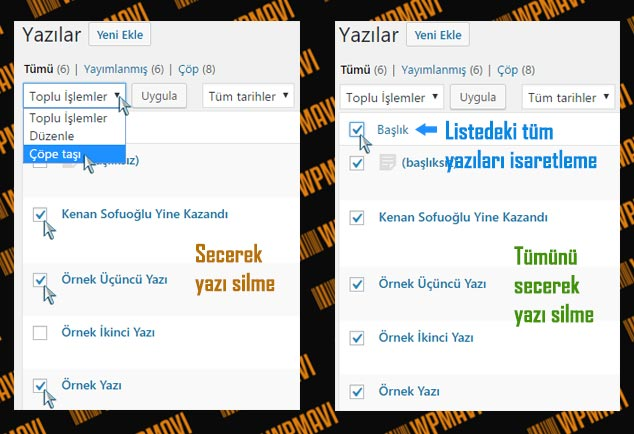 WordPress Toplu Yazı Silme
