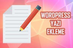 WordPress Yazı Ekleme
