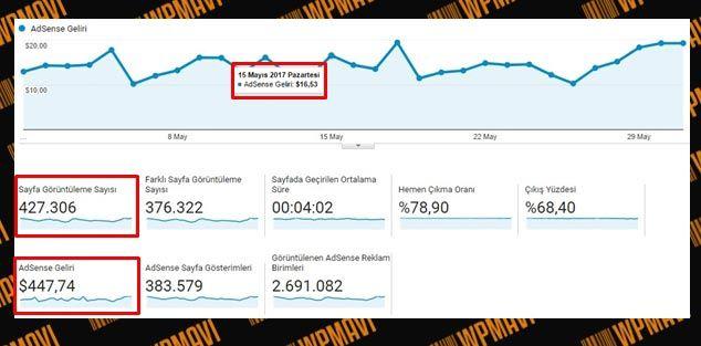 Google Adsense Ne Kadar Kazandırır - Adsense Kazaçları - Örnek 2