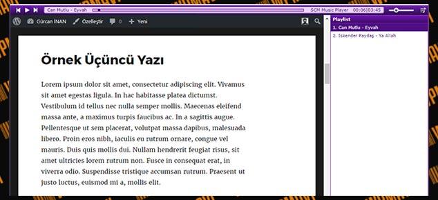 WordPress Arka Plana Müzik Ekleme - Müzik Player