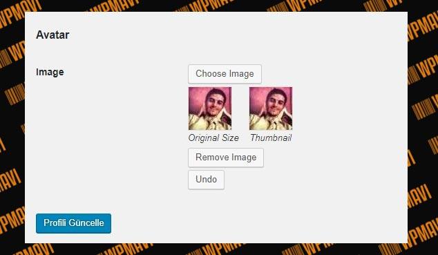 Wordpress Admin Resmi Eklemek - WordPress Yazar Fotoğrafı Eklemek
