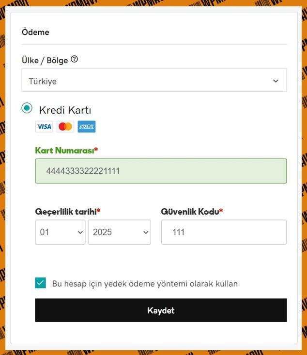 Host ve domain alma - ödeme bilgileri girme ekranı