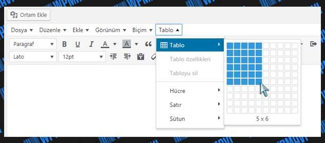 WordPress Tablo Ekleme - Satır ve Sütun Ayarlama