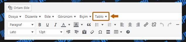 WordPress Tablo Ekleme - Tablo Seçeneği