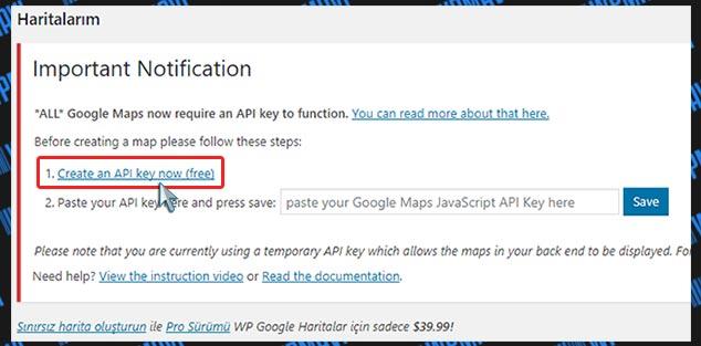 WordPress Harita Eklentisi - API Key