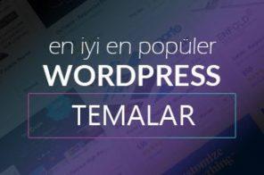 Profesyonel WordPress Temaları
