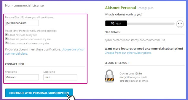 WordPress Akismet API Key