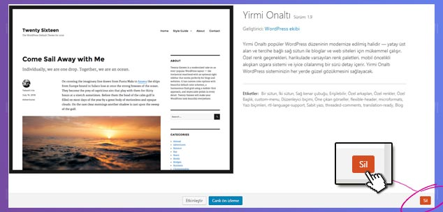 WordPress Tema Silme