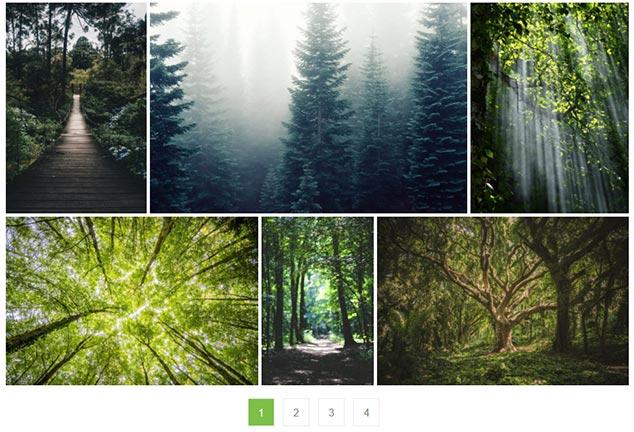 WordPress Galeri Sayfalama Eklentisi